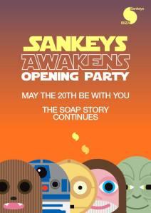 sankeys 1